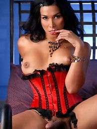 Tempting tgirl Vaniity playing with her ass and cock