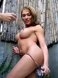 Two transsexual pornstars teasing